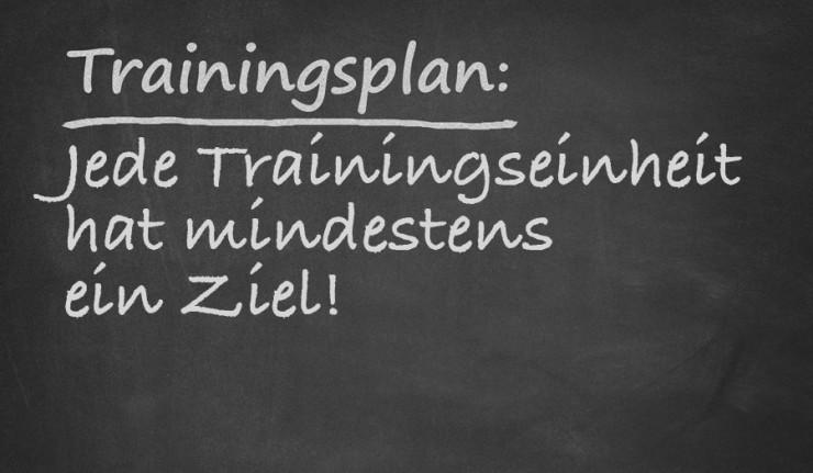 trainingsziele
